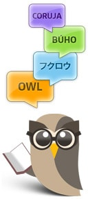 translate owl