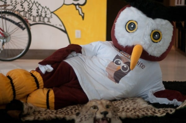 HootSuite's Owly ready for filming