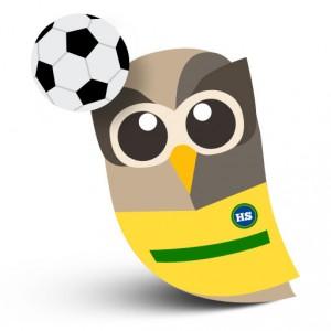 Brazilian Owly w/ Soccer Ball