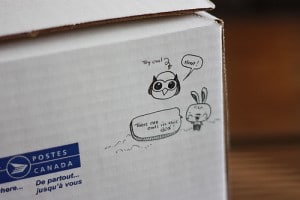 HootSuite owl details on shipping box