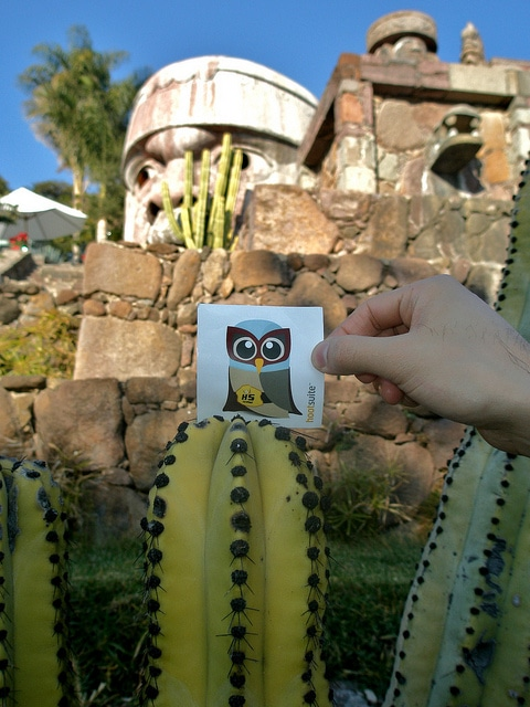 El Hootador in Mexico with cacti
