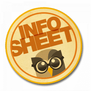 The Info Sheet Icon