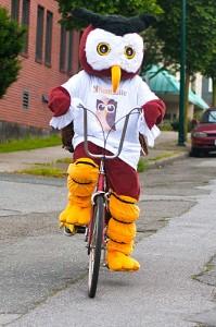 Owly rides a bike
