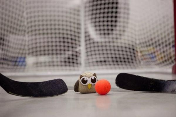 owly plays in net