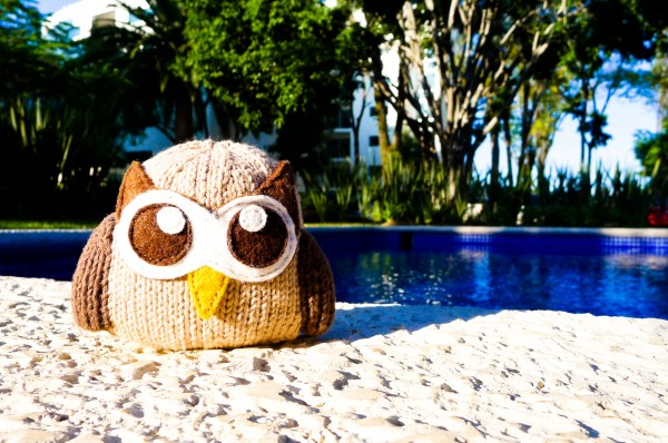 Owly on vacation