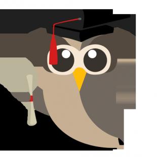 Grad Owly