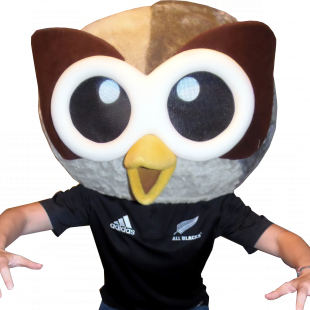 Owly poses in a New Zealand AllBlacks jersey