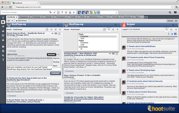 600px scripted wordpress screenshot