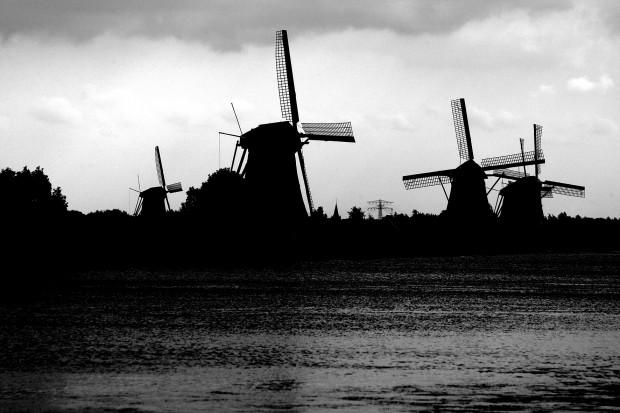 Hoo's Hooting in Nederland? @QmusicNL @dwdd @Koningin_NL en Vele Anderen!