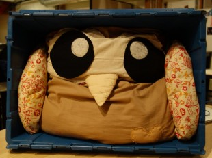 Owly on the move