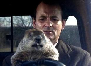 Bill Murray in Groundhog Day. Image from taskrabbit.com