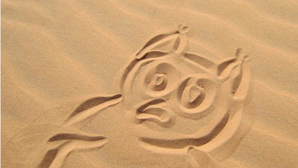 Owly on Mars? Almost...