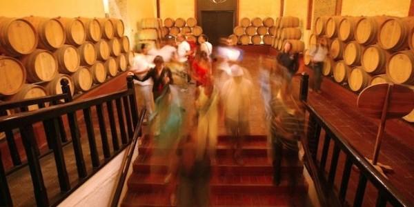 Photo Courtesy of Concha Y Toro Winery