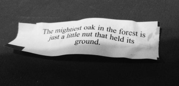 mightyoak fortune cookie