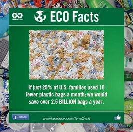 TerraCycle Eco Facts