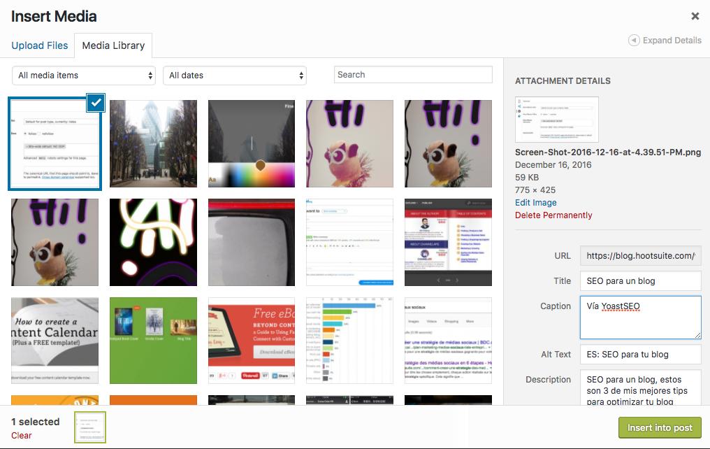 SEO para tu blog con nuestras herramientas y tips