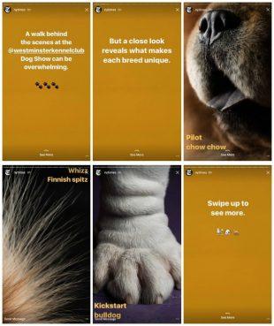 ES: Las Historias de Instagram comunican más que un mensaje
