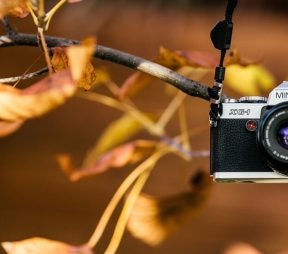 3 Unlikely Brands That Are Killing it on Instagram (And How Yours Can Too) | Hootsuite Blog