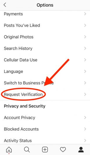 Request Verification button on Instagram app