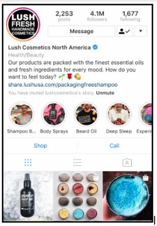 11 Excellent Brand Bios On Instagram To Inspire Your Own Social Media Marketing Management Dashboard