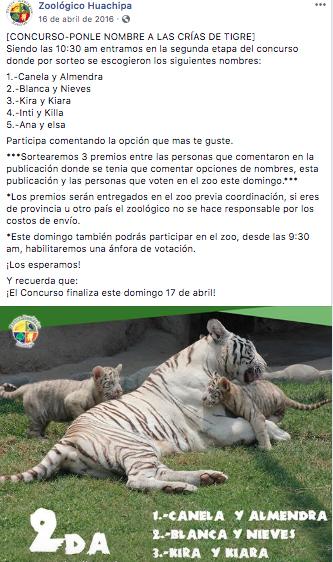 Zoológico de Huachipa - Concurso de redes sociales