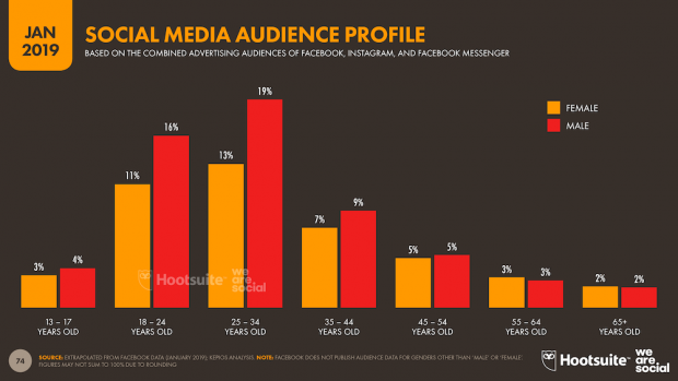 social media audience profile