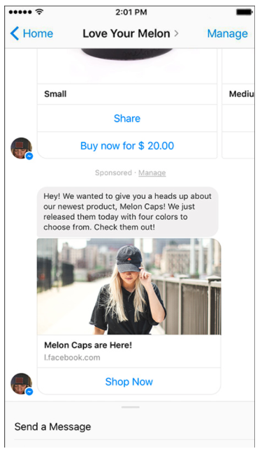 Love Your Melon Facebook Messenger ad