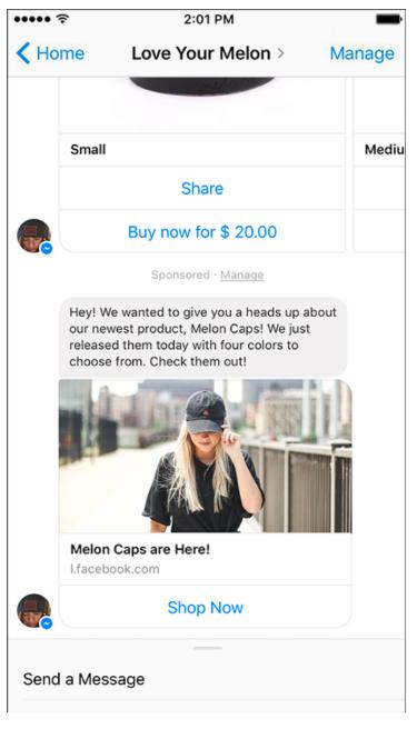 Aimez votre melon Facebook Messenger ad