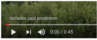 Sponsored content disclaimer on video