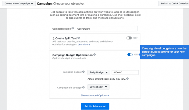 "Campaign Budget Optimization tab with Daily budget set to $100 and Campaign Bid Strategy set to ""Lowest cost"""