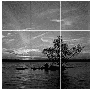 image of a tree on a lake divided into 9 equal squares increase YouTube engagement