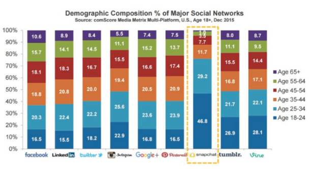 snapchat for business: demographic composition chart