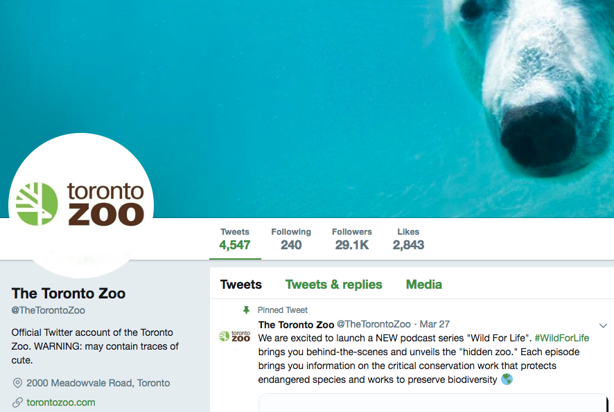 How to Write a Good Twitter Bio: Tips, Ideas, and Examples