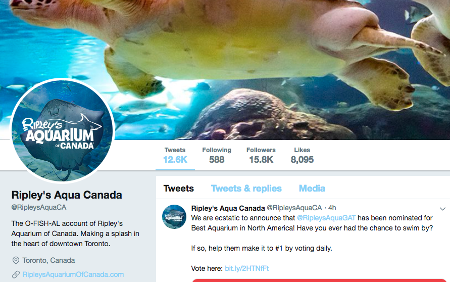 Twitter bio for Toronto Aquarium
