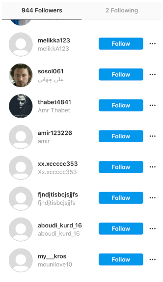 List of akaprincessrosebud's fake Instagram followers