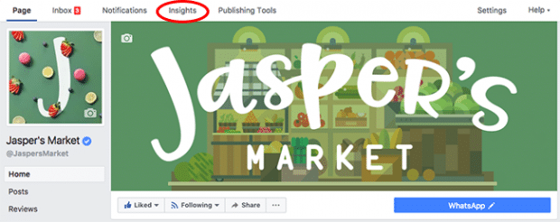 Screenshot of the Insights tab at the top of a Facebook for business page