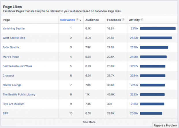 Facebook Audience Insights par Likes Page