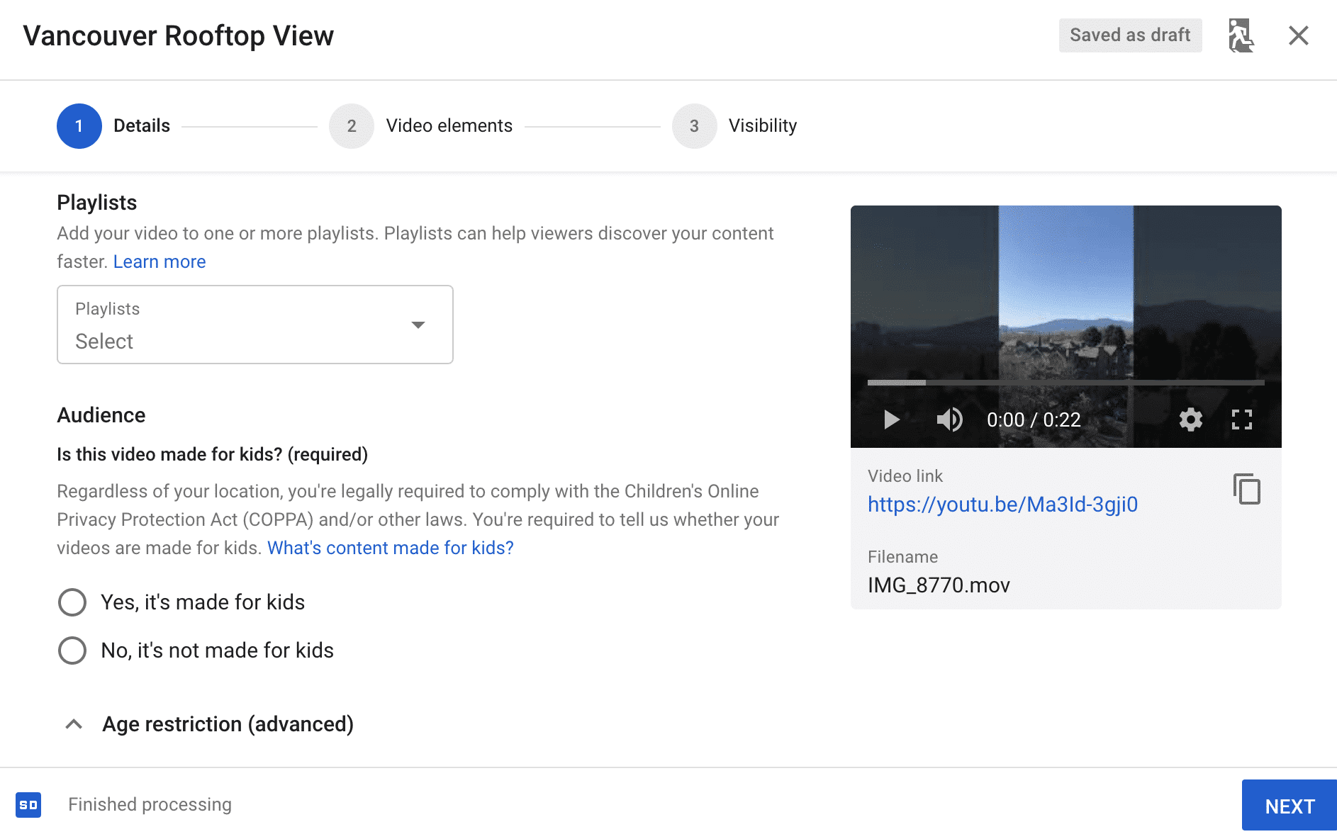 details tab for uploading a YouTube video