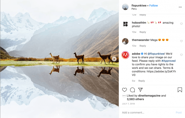 "Instagram post of 3 llamas by ""flopunktwe"" with comment by Adobe asking permission to repost"