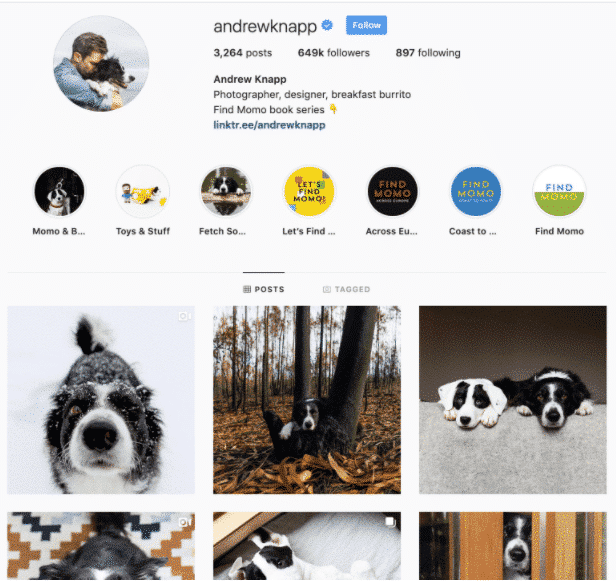 Andrew Knapp Instagram profile