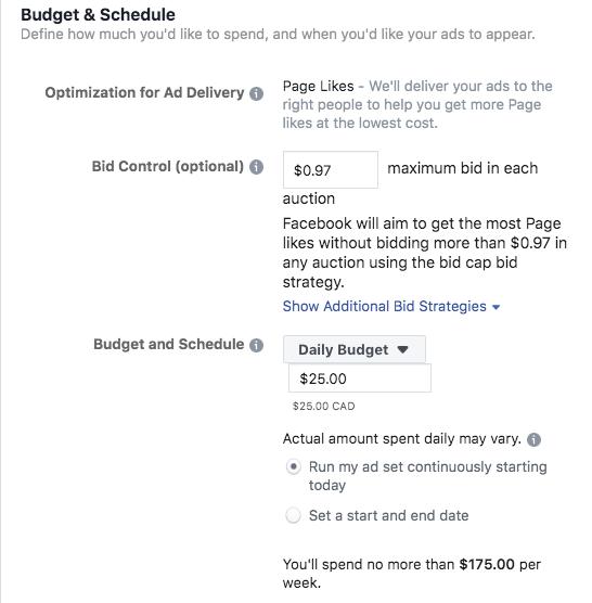 Options pour définir votre budget publicitaire