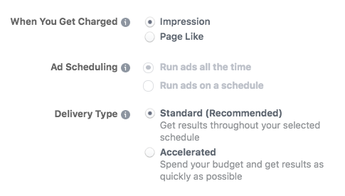 Advance budget options when setting up a Facebook ad