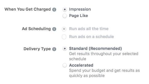 Options de budget avancées lors de la configuration d'une annonce Facebook